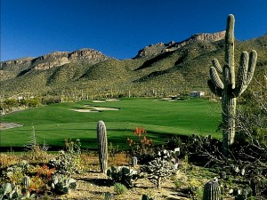 arizona-national-14-desert-photograph-arizona-golf-authority